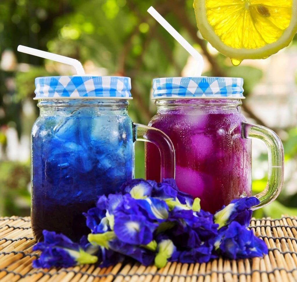 Healing benefit of Butterfly Pea!