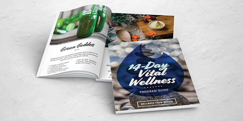 14-Day Vital Wellness Program (8x Boxes-128 Sachets, E-guide and one hour consultation)