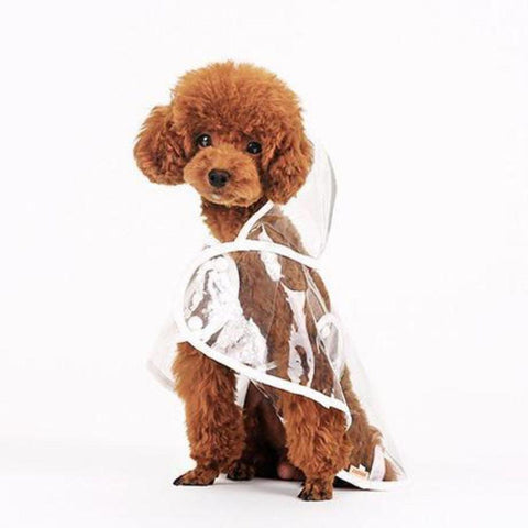 Image of Waterproof Dog Raincoat with Hood Transparent Pet Dog Puppy Pet Lightweight Raincoat Cloak Costumes Clothes for Dogs Pet Supplies