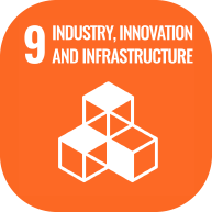 UN industry, innovation and infrastructure icon
