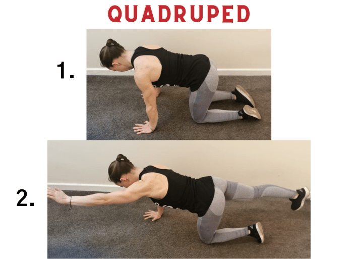 Exercises to prevent and treat swimmer's shoulder | Common injuries for runners and triathletes | Quadruped