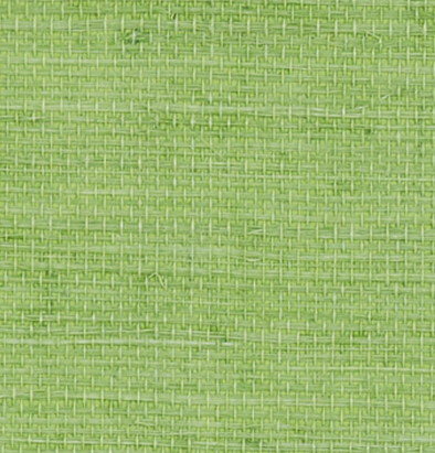 grasscloth wallpaper in bright kelly green color
