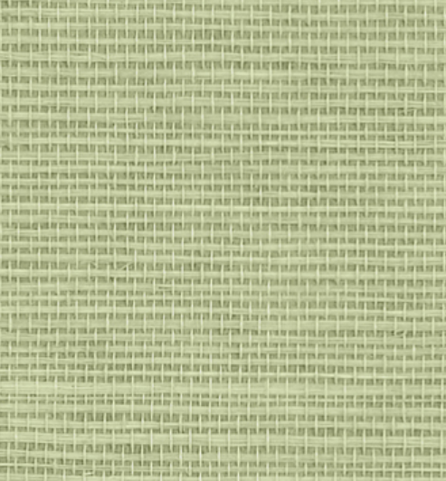 grasscloth wallpaper in light green