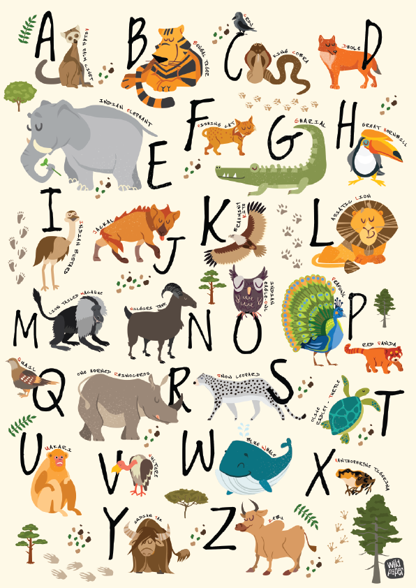A - Z Indian Wildlife - Non Tearable Poster