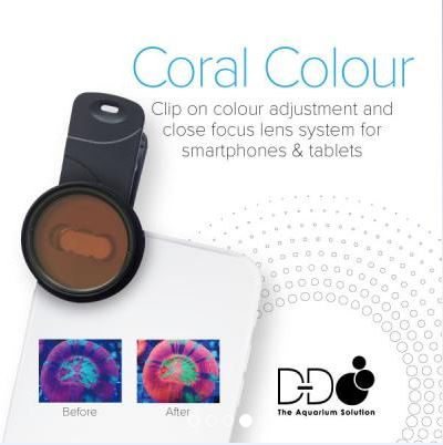 D&D Coral Colour Clip On Photo Filters
