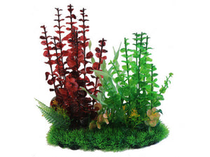 "Betta 13"" Red & Green Combi Plant"