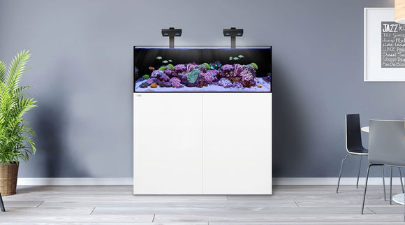 Waterbox Frag