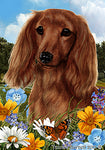 "Dachshund  Longhaired Red - Best of Breed Summer Flowers Garden Flag 12"" x 17"""