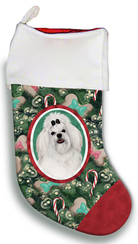 Maltese Bow- Best of Breed Christmas Stocking