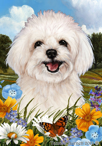 "Maltipoo- Best of Breed Summer Flowers Garden Flag 12"" x 17"""
