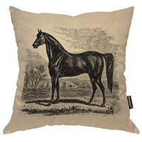 Moslion Throw Pillow Cover Horse 18x18 Inch Vintage 1800S Horse Morgan Equestrian Sketch Square Pillow Case Cushion Cover for Home Car Decorative Cotton Linen