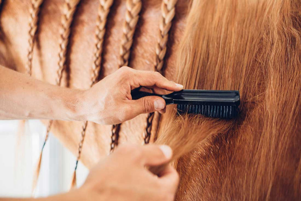How to Properly Brush Your Horse's Mane