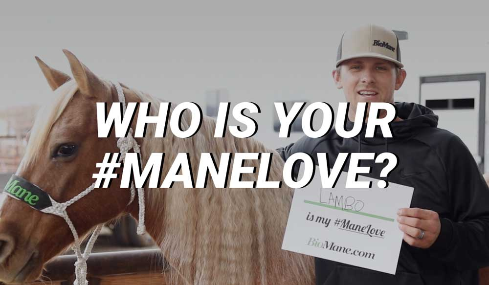 Who Is Your #ManeLove?