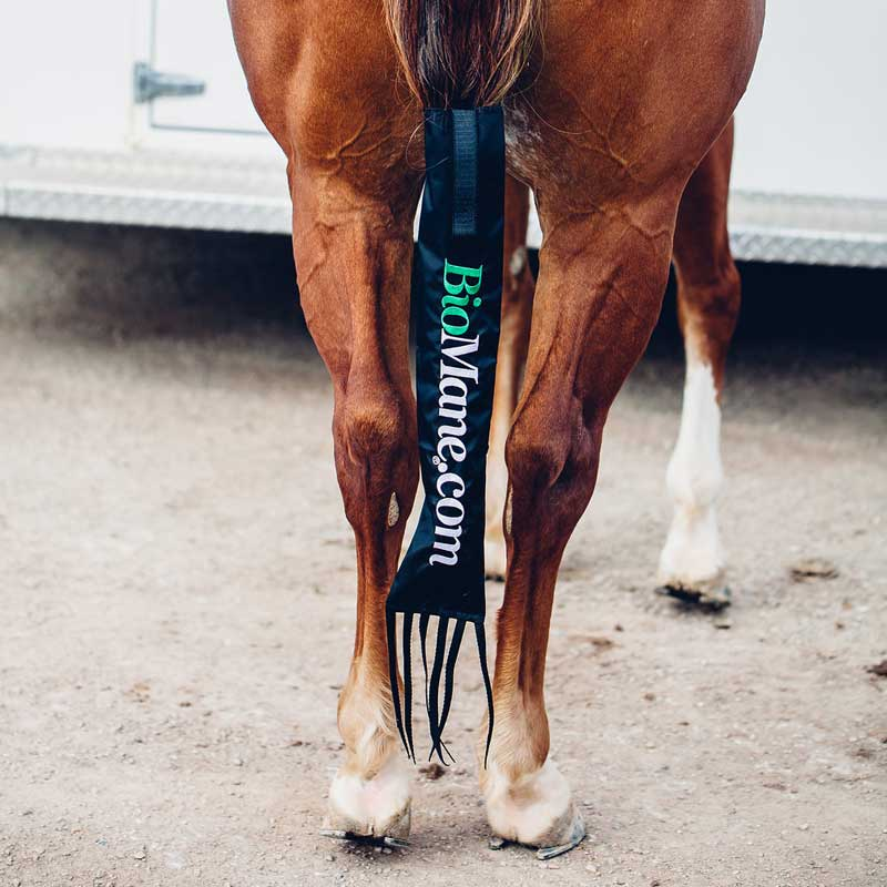 BioMane Horse Tail Bag