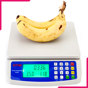 Price Computing Digital Scale 1g-30kg