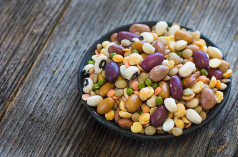 Everything You Need to Know About Plant Based Protein
