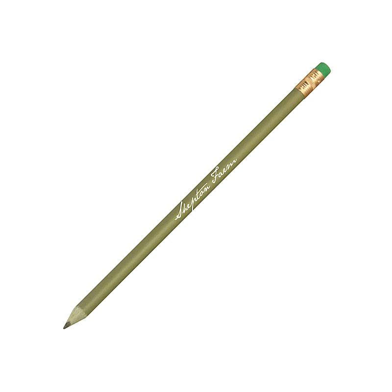 Green & Good Recycled Money Pencil