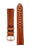 Hirsch GENUINE ALLIGATOR Louisiana Alligator Watch Strap in GOLD BROWN