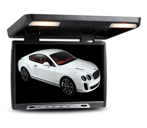 19'' HD Roof Mounted Monitor