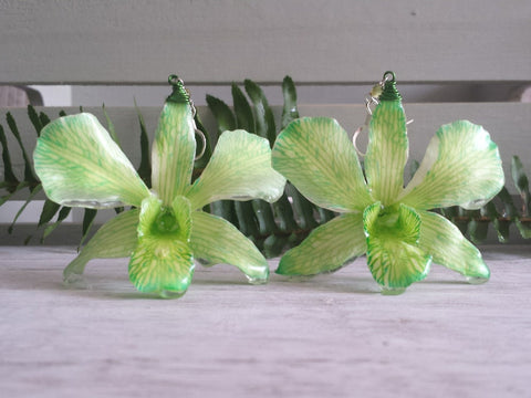 Whole Green Orchid Earrings