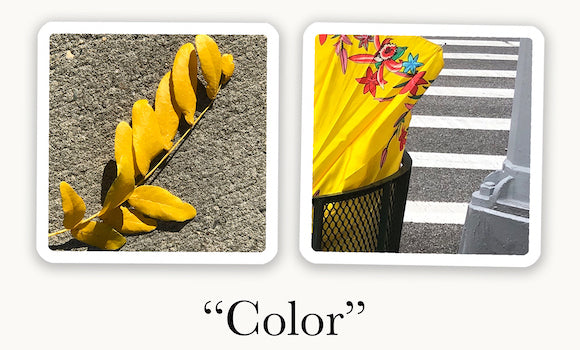 Two OuiSi photo cards connect visually based on a yellow color.