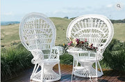 Peacock Chairs White - Pair