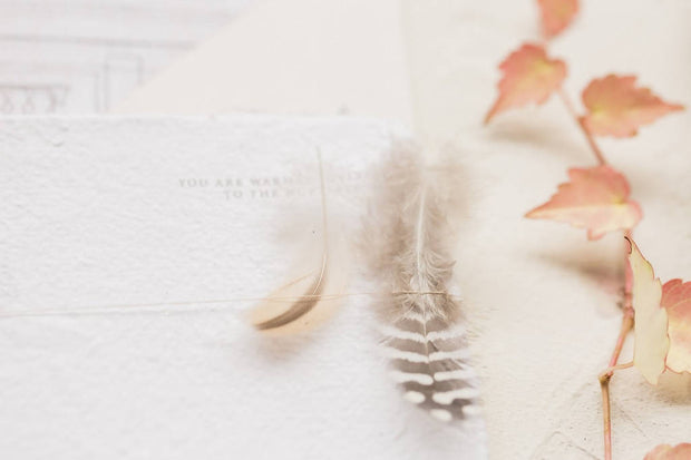 Feather Invitation