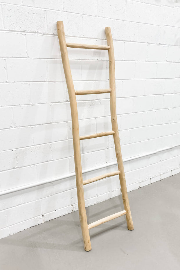 Driftwood Ladder