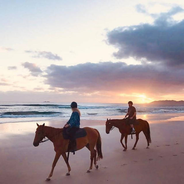 Zephyr Horses Sunrise or Sunset Horse Ride Tours