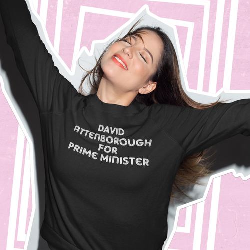 David Attenborough for Prime Minister jumper