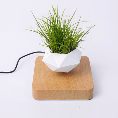 Mid-Air Levitating Bonsai Rotation Magnetic Floating Planter