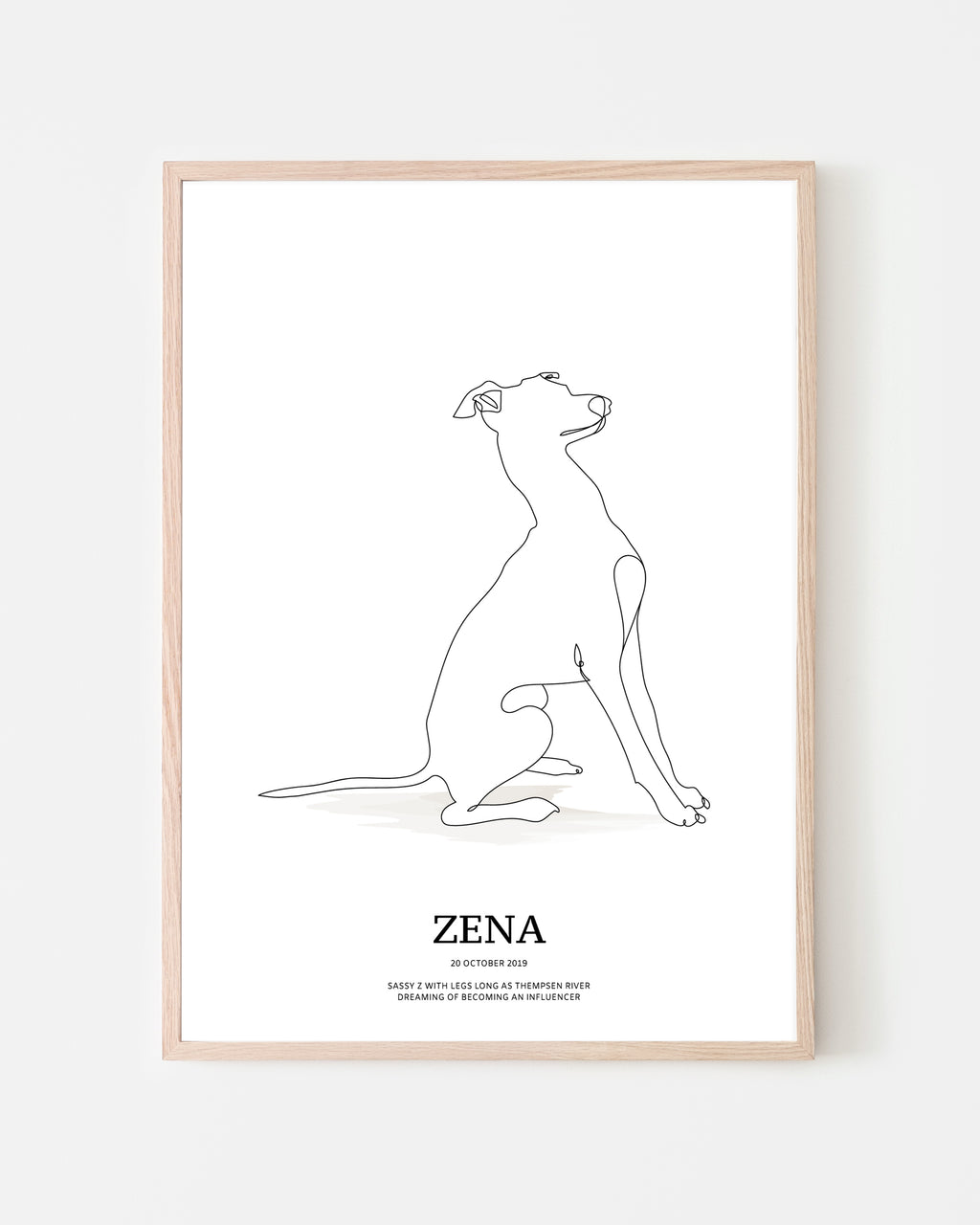 Italian Greyhound (sitting)