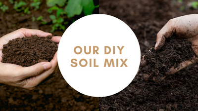 DIY soil mix