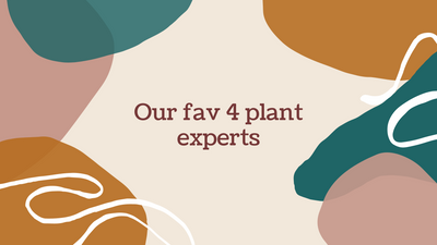 Our fav 4 plant experts