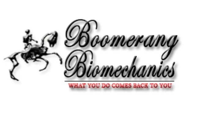Dissection & Boomerang Biomechanics