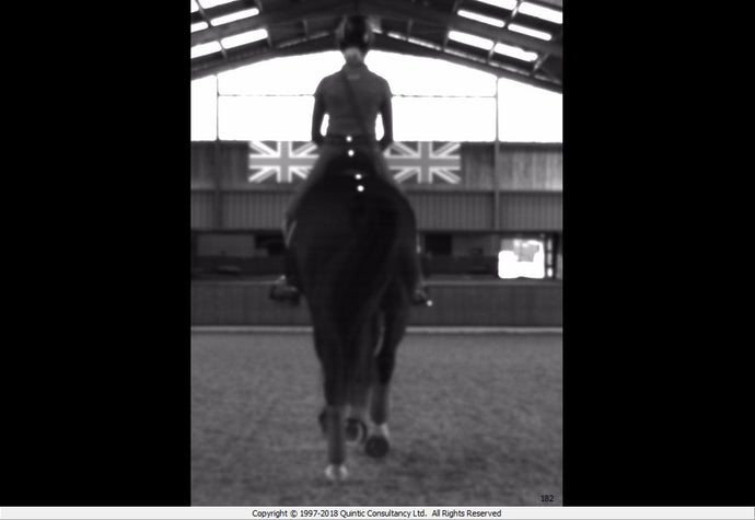 The Performance Cameras could they help you and your horse?