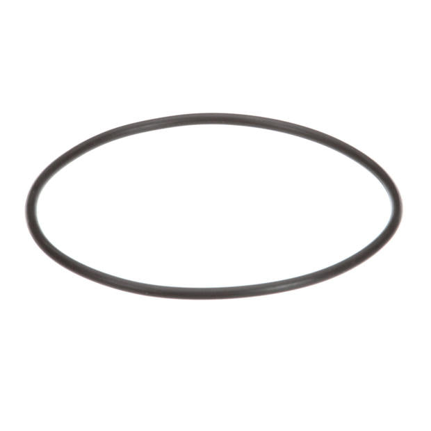 Everpure® 307119 Rubber Gasket For Prefilter K-20