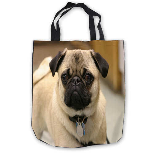 ToteBags Hand Bags Shopping Bag