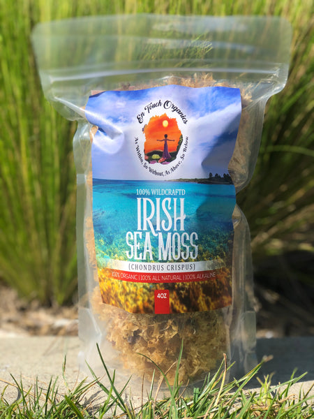 "HEALTH BENEFITS OF ""IRISH SEA MOSS"""
