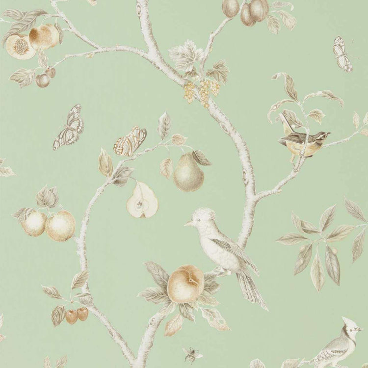 Fruit Aviary Sage behang Sanderson Selected wallpapers by OOSTENDORP