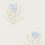 Protea Flower China Blue behang Sanderson Selected wallpapers by OOSTENDORP