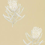 Protea Flower Sepia behang Sanderson Selected wallpapers by OOSTENDORP