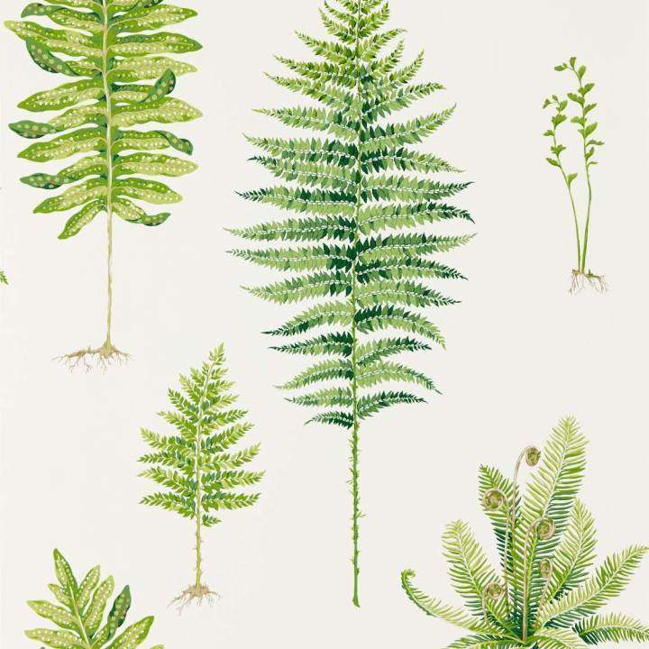 Fernery Green behang Sanderson Selected wallpapers by OOSTENDORP