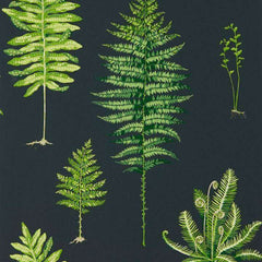 Fernery Green/Charcoal behang Sanderson Selected wallpapers by OOSTENDORP