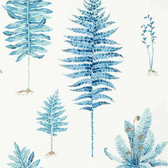 Fernery China Blue behang Sanderson Selected wallpapers by OOSTENDORP