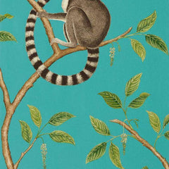 Ringtailed Lemur Teal behang Sanderson Selected wallpapers by OOSTENDORP