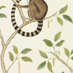 Ringtailed Lemur Cream/Olive behang Sanderson Selected wallpapers by OOSTENDORP