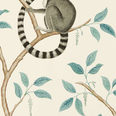 Ringtailed Lemur Stone behang Sanderson Selected wallpapers by OOSTENDORP