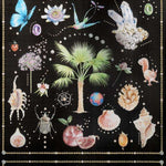 Curiosites Nocturne behang Pierre Frey Selected wallpapers by OOSTENDORP