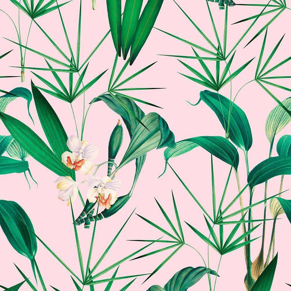 Palm Springs Roze behang Mind the Gap Selected wallpapers by OOSTENDORP